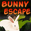 Bunny Escape