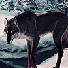 Black wolf in the woods slide puzzle