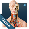 anatomicus-anatomy-game
