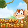 monkey-in-trouble
