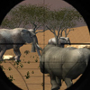 animal-hunter-3d-africa