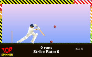 Howzat-Top Spinner Cricket Game
